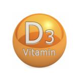 Vitamin D とは