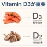 2つのビタミンD